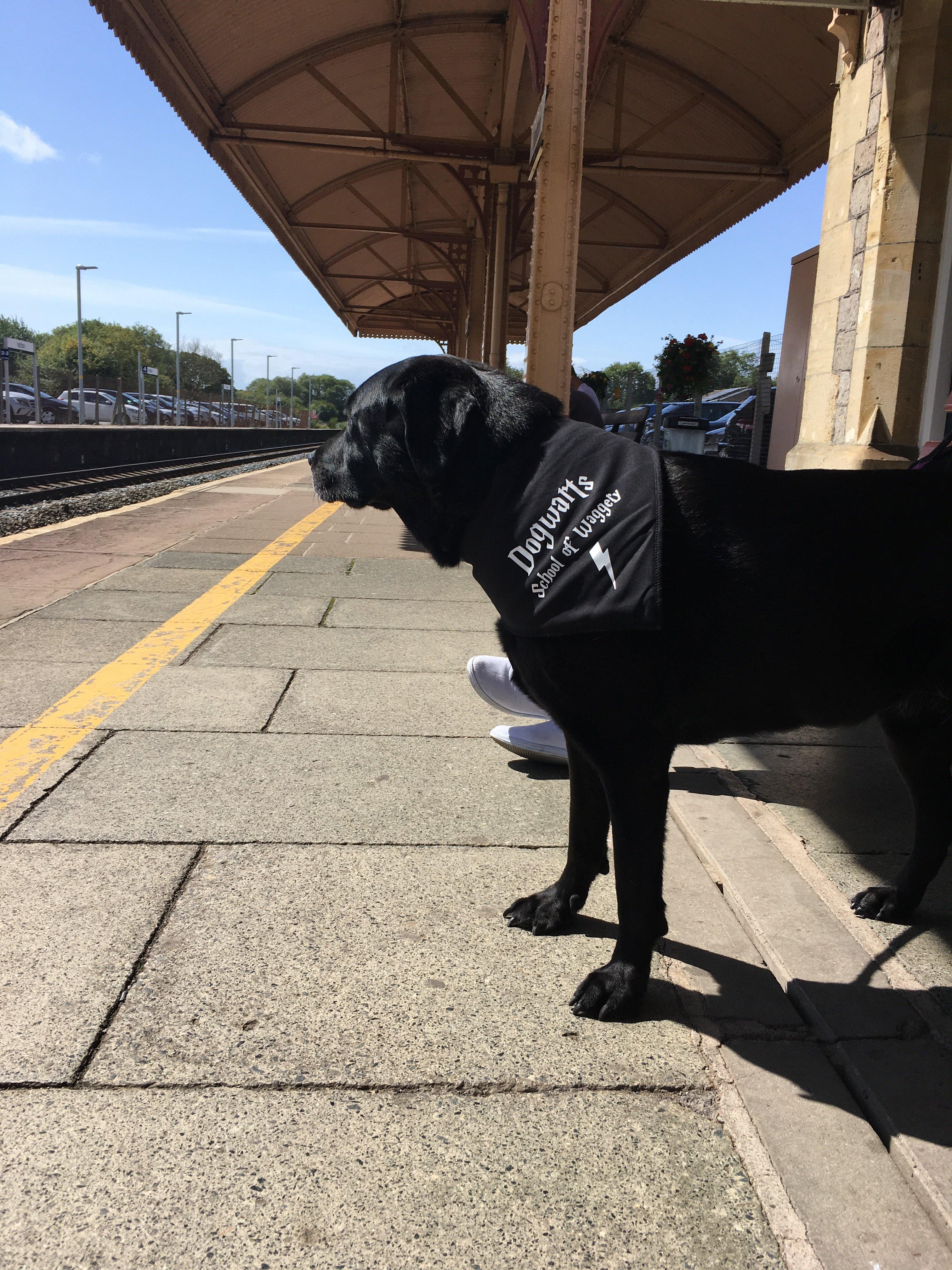 den waiting for train.JPG