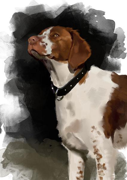 dog-3-copy.jpg