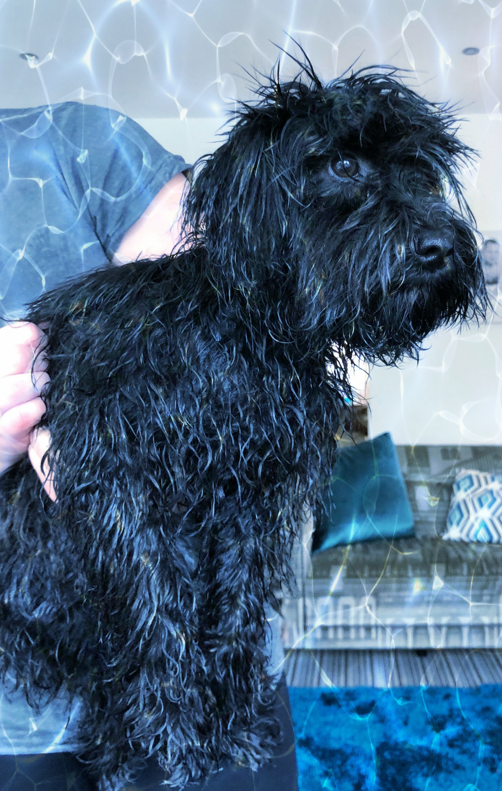 Doris had a bath1.jpg