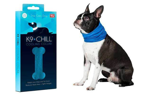 K9-Chill-Pet-Products-Dog-Cooling-Collar.jpg