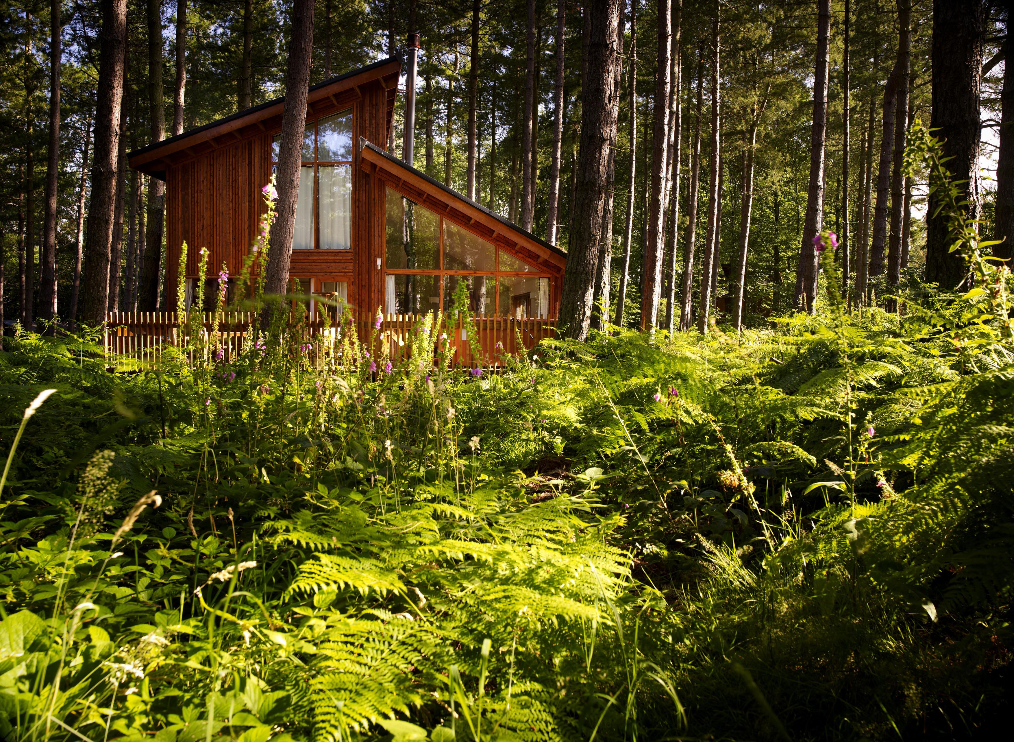 sherwood-cabin .jpg