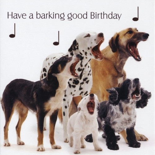 singing_dogs_happy_birthday_meme_dog1.jpg
